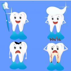 dental especializada em endodontia